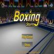 Boxing Storm